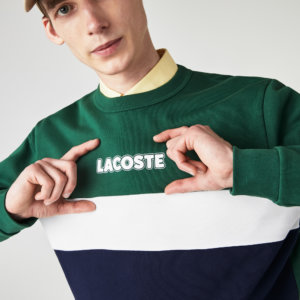 Sudadera Lacoste color block 1